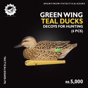 Green Wing Teal Ducks Decoys for Hunting (6 Pcs)